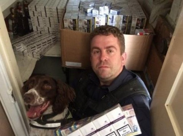 Dog handler Stuart Phillips of BWY Canine Ltd and tobacco detection dog Scamp, with illegal cigarettes found at the home address