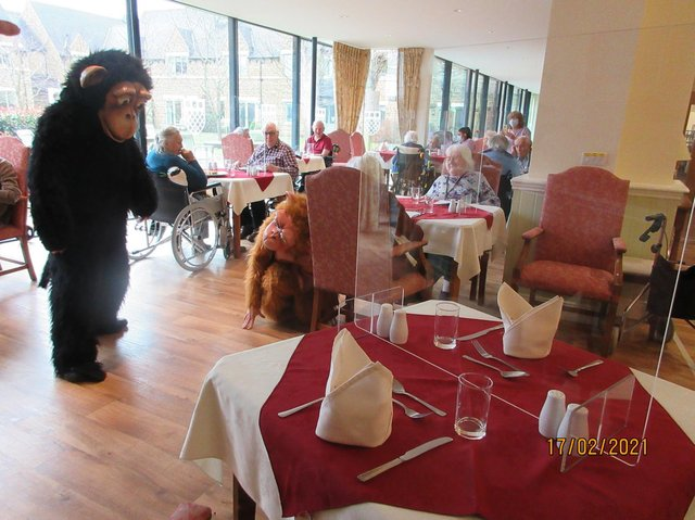 Lunchtime at Godswell was rather different with staff in animal costumes