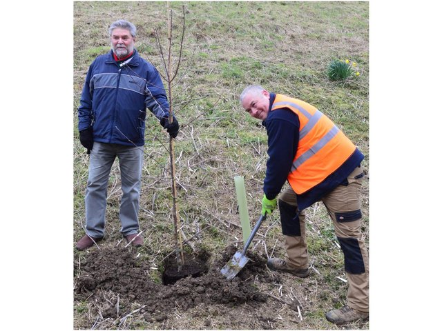 Banbury Town Cllr Colin Clarke and 4th Corner's Adam Collett plant a crab apple tree. (photo from Banbury Town Council)