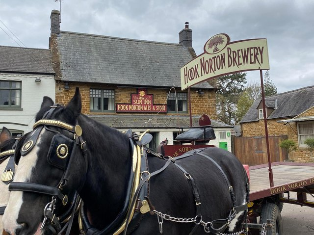 Commander and Lucas, the Shire horses, delivering beer to one of Hook Norton Brewery's pubs