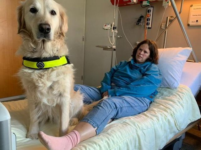 Assistance dogs can bring huge benefit to hospital and care setting patients and their paws are no riskier than the soles of our feet, says Banbury charity Dogs for Good Picture by Utrecht University