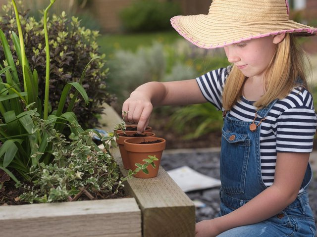 Banbury home builder Redrow is searching for a 'Grow-getter' to design a garden of the future