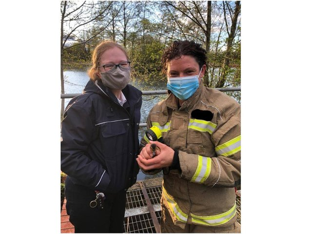 Firefighters along with officials from the RSPCA rescued a duckling stuck in a storm drain in Banbury yesterday, Tuesday May 4. (Image from the Oxfordshire Fire & Rescue Facebook page)