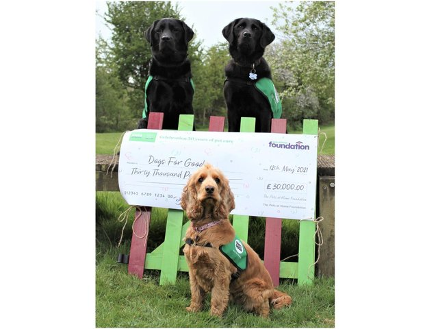Banbury-based charity - Dogs for Good - gets £30,000 grant from Pets at Home Foundation