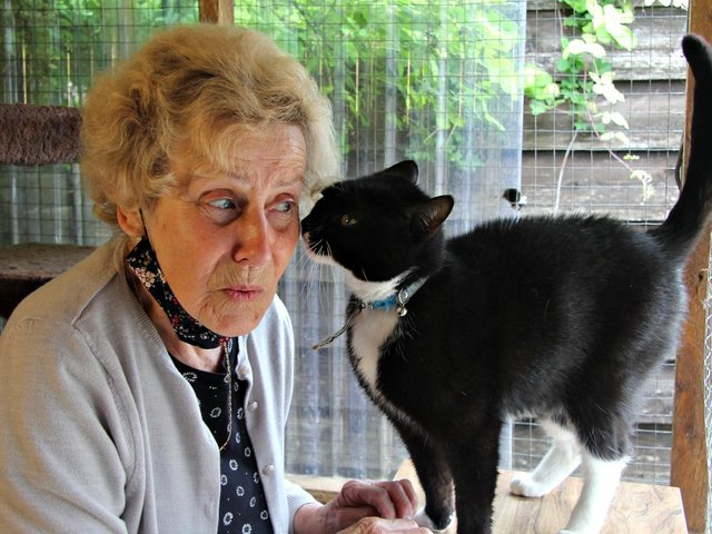 BARKS volunteer Wendy Lewis with Milo who would love to find a new owner (Image from BARKS)