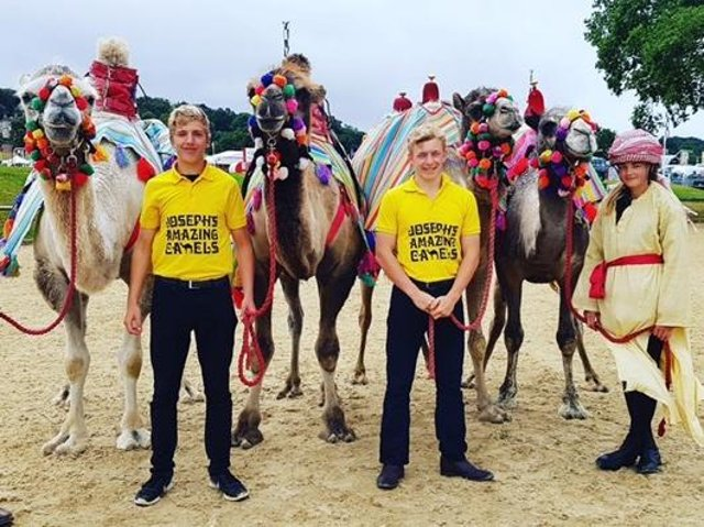 Josephs Amazing Camels Countryside Show and Camel Racing Extravaganza returns to Shipston farm on Sunday July 18 (submitted photo from the farm)